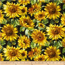 Michael Miller Florals Sunny Bloom Sunshine