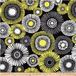 Michael Miller Citron Gray Straw Daisy