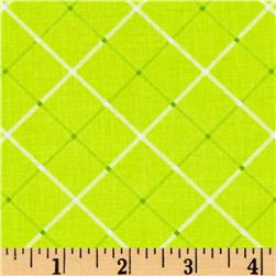 Hand Picked Plaid Lime