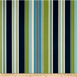 Bryant Indoor/Outdoor Hudson Stripe Mallard