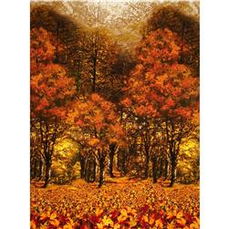 Timeless Treasures Back Nature Fall Landscape Autumn