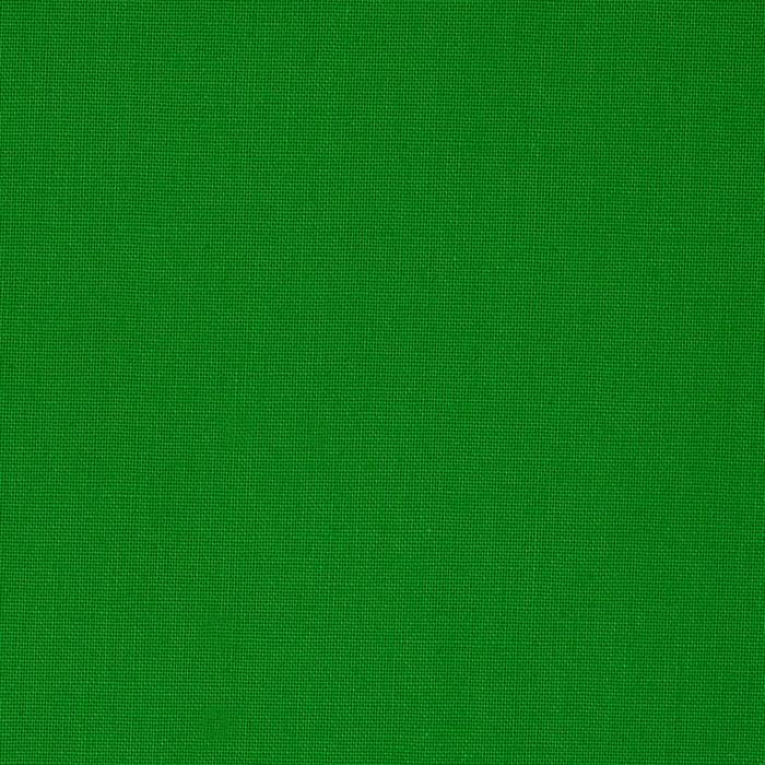 Sonoma Solids Apple Green