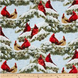 Winter Cardinals Multi