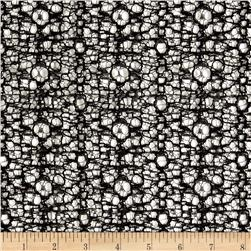 Veneta Lace Black Fabric