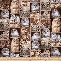 Kanvas The Great North Wilderness Flannel Feathered Owlet Natural