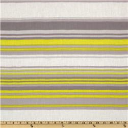 Designer Voile Stripe Grey/Lime