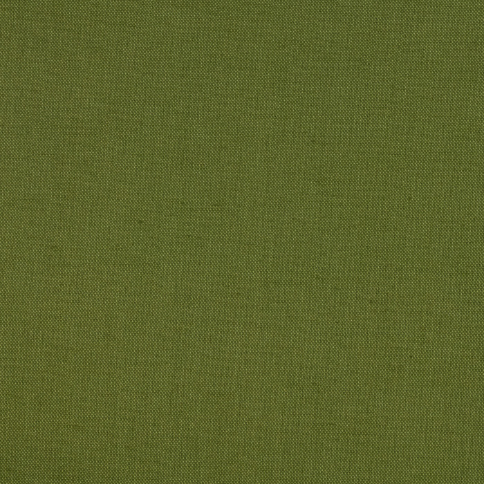 Timeless Treasures Soho Solid Broadcloth Avocado Fabric