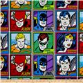 DC Comics Meet The Heroes Multi
