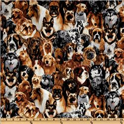 Kanvas Pedigree Dogs Mans Best Friend Neutral Fabric