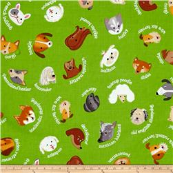 Kaufman Whiskers & Tails My Dog Green