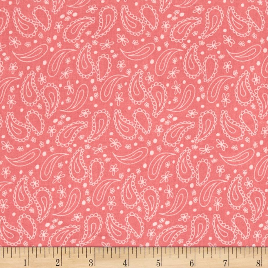 On The Road Again Paisley Pink