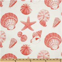 Premier Prints Shells White/Coral