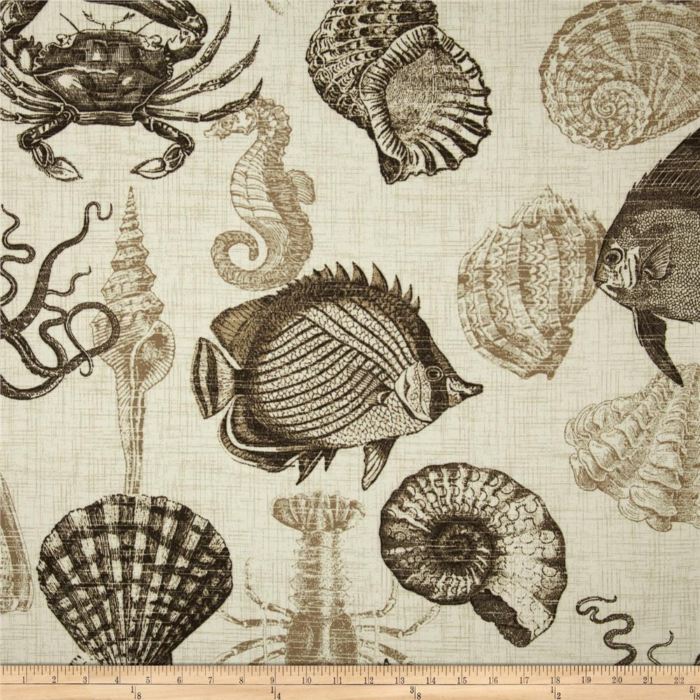 Discount outdoor fabric by the yard - Richloom Solarium Outdoor Sealife Driftwood Discount Designer Fabric Fabric Com