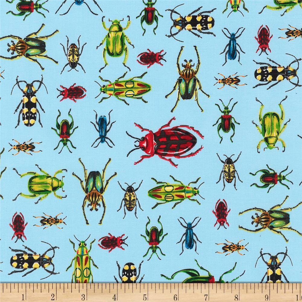 Kaufman Everyday Favorites Bugs Sky