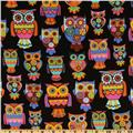 Owl Owls Black