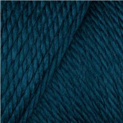 Caron Simply Soft Yarn 6oz (9759) Ocean