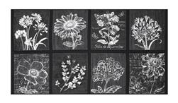 "Kaufman Botanical Beauty Digital Print 24"" Panel Smoke"