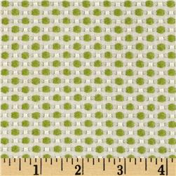 Candy Jacquard Dots Green