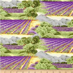 Lavendar Fields Stripe Green/Purple