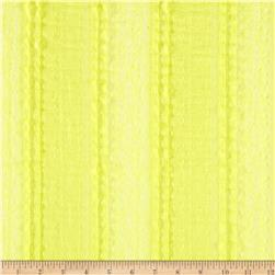 Stretch Mini Ruffle Lace Yellow