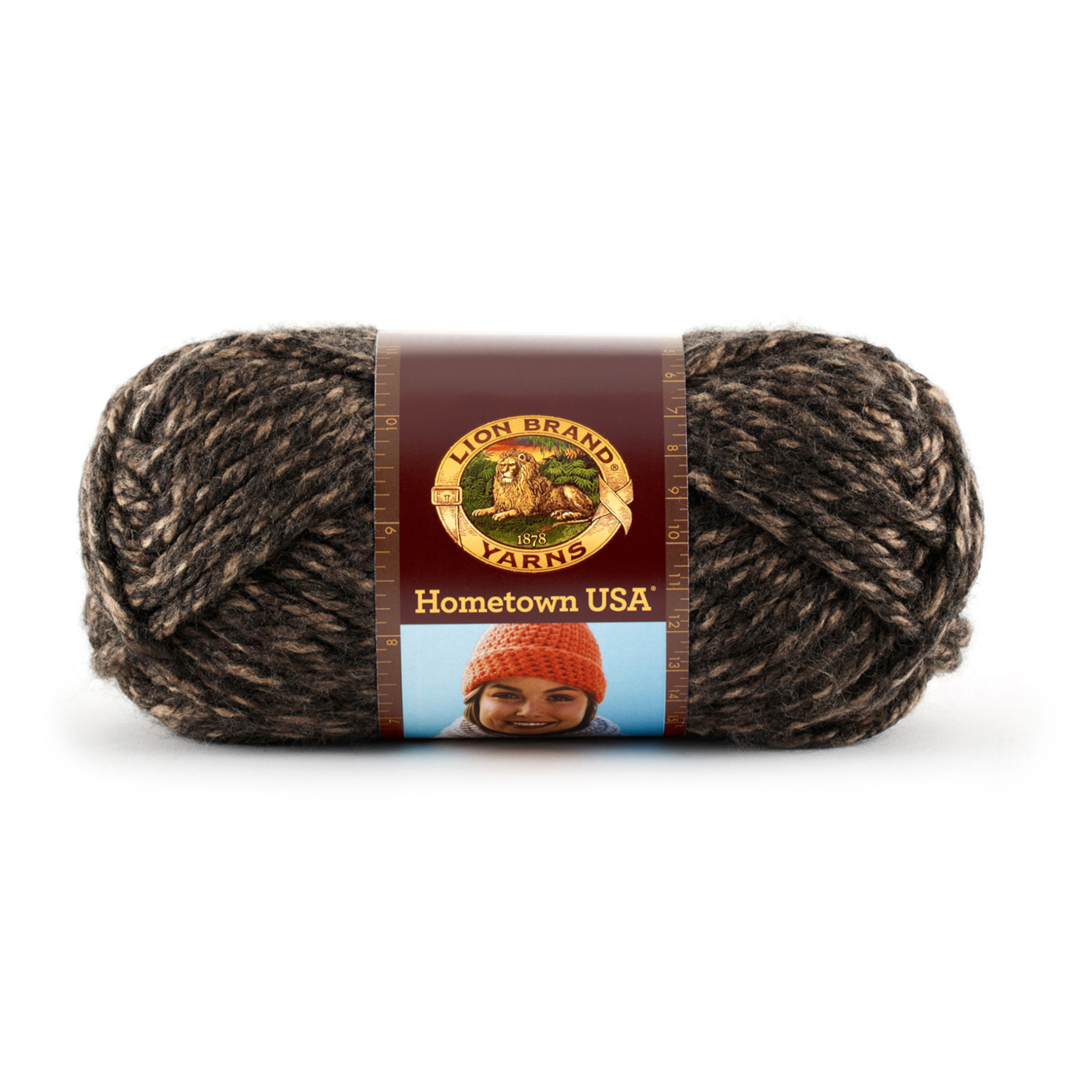 Lion Brand Hometown USA Yarn (215) Little Rock