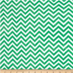Minky Cuddle Mini Chevron Kelly Green/Snow Fabric