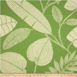 Home Accents Fuji Slub Fern