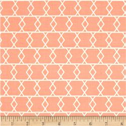 Riley Blake Apricot & Persimmon Apricot Criss Cross Peach