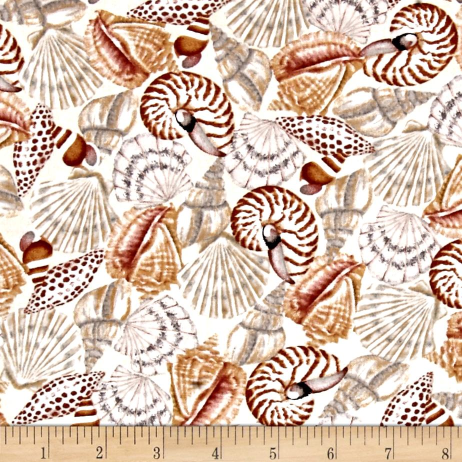 Seaside Dreams Packed Shells Ecru