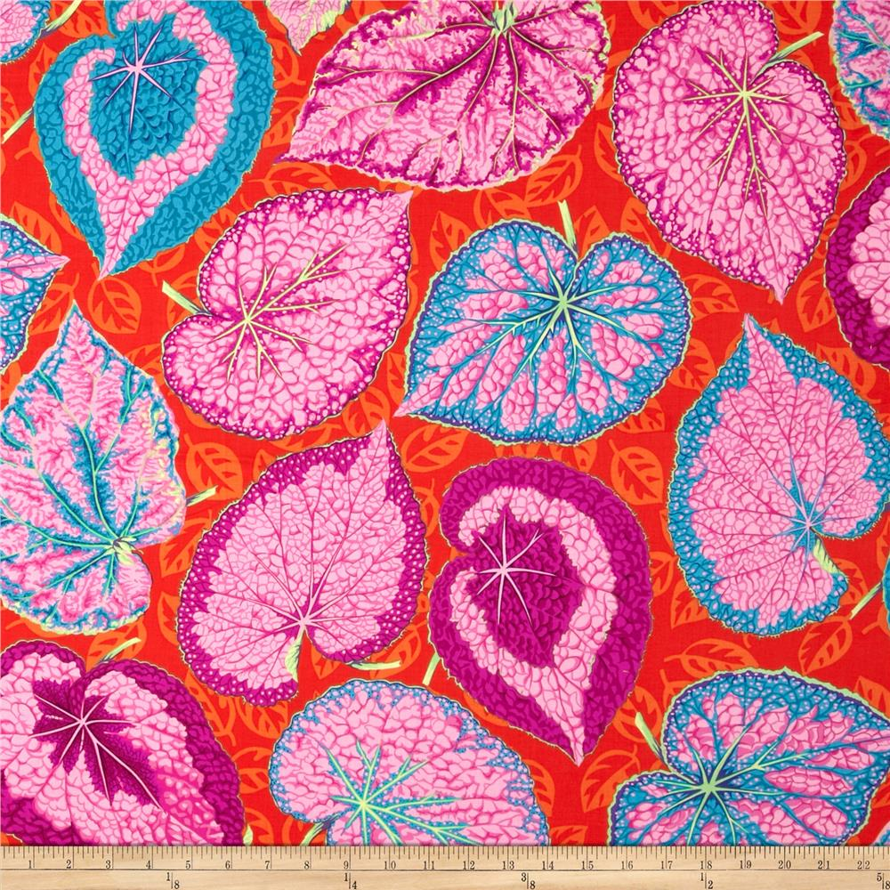 Kaffe Fassett Collective Volcano Big Leaf Pink