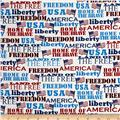 Kaufman Patriots Words Americana