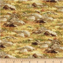 Breaking Light Rock and Grass Green Fabric