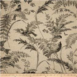 Lacefield Bird Toile Ink