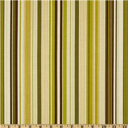 Riley Blake Elk Ridge Stripe Green