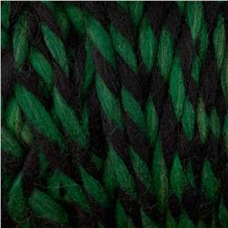 Lion Brand Country Yarn Adirondack Green