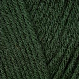 Red Heart Super Saver Yarn 633 Dark Sage