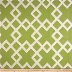Dwell Studio Sunbrella Cross Lane Lime