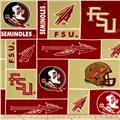 Collegiate Fleece Florida State University Blocks Garnet
