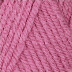 Waverly Yarn for Bernat Past Perfect (55401) Fresh
