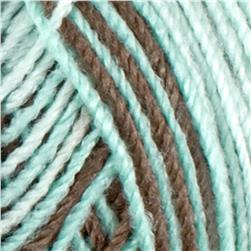 Red Heart Yarn Baby TLC 8930 Chocolate Mint