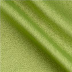 Poly Two Tone Chiffon Sage/Lime
