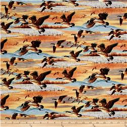 Duck Duck Goose Flying Geese Multi