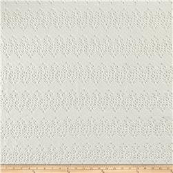 Italian Designer Cotton Scallopped Pattern Lace Ivory