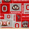 Collegiate Fleece Ohio State University Blocks Red
