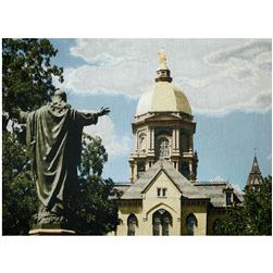 Photorealism Wall Décor/Panel Golden Dome Multi