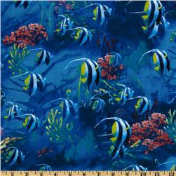 Nature and Outdoor Tropical Fish Blue