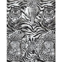 Robert Kaufman The Wild Side Animals Grey