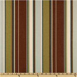 Richloom Indoor/Outdoor Covestripe Spa Home Decor Fabric