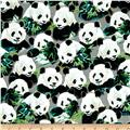 Quilting Treasures Imperial Panda Packed Pandas Gray