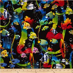 Kanvas Ocean Ave II Rainbow Fish Black
